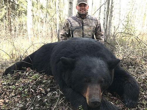 bear-slider2