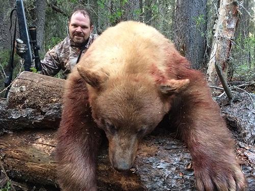 bear-slider3