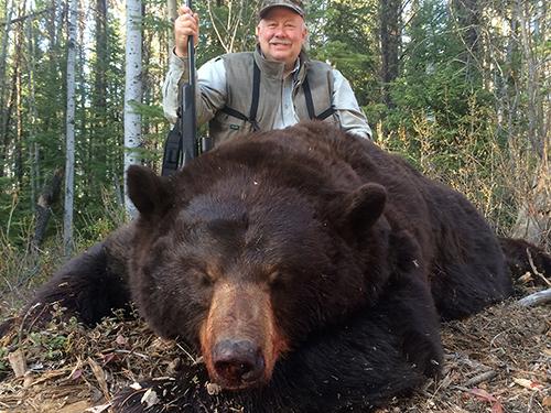 bear-slider4